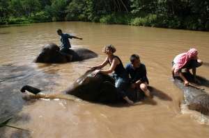 Elephant Camp, Anantara Golden Triangle Resort & Spa, Thailand