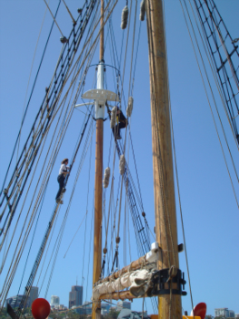 Friends climb the mast of the Southern Swan