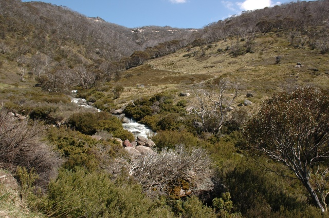 Thredbo River in Kosciuszko National Park