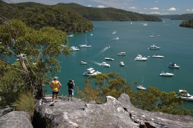 Overlooking Refuge Bay in Ku-ring-gai Chase National Park