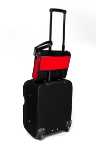 The Airpocket on wheeled bag back