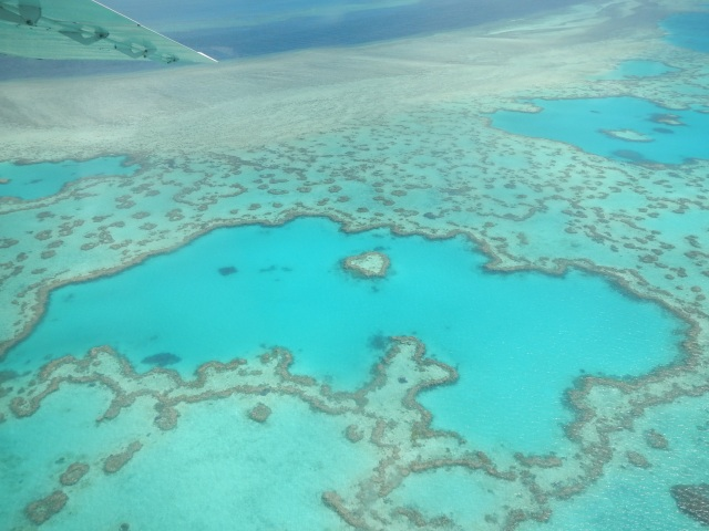 Heart Reef, Whitsundays, Australia