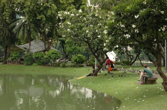 Lumpini Park offers cool respite from the heat in Bangkok. Photo © Briar Jensen
