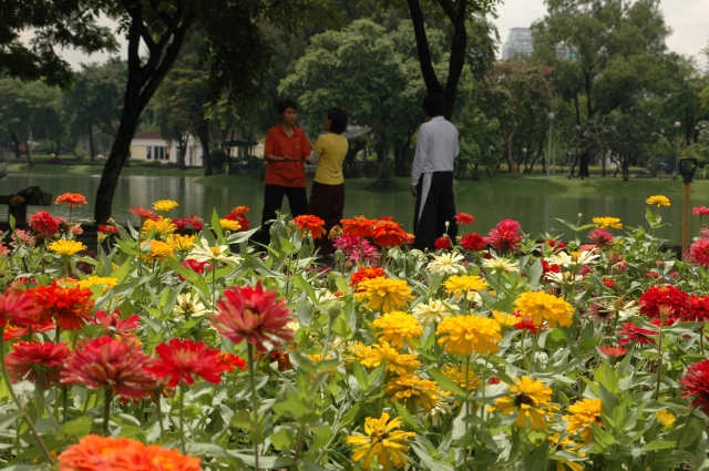 Lumpini Park is a tranquil place to exercise