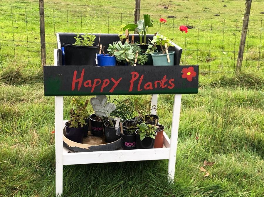 Roadside plant stall Bruny Island