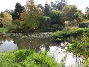Water garden at Sprokkelwood